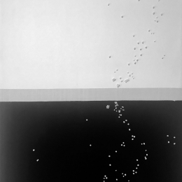 Perlas-negras-2018
