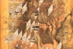 Serie-libro-neufert-num-79-2019-30x22-cms-Encaustica-sobre-mandera