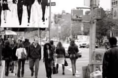 billboards_big15