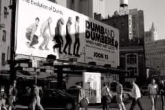 billboards_big39