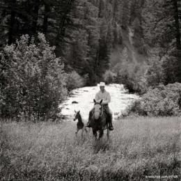 cowboy_big1