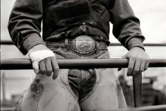 cowboy_big15