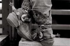 cowboy_big17