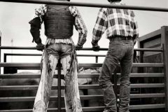 cowboy_big18