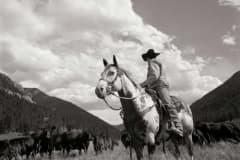cowboy_big19